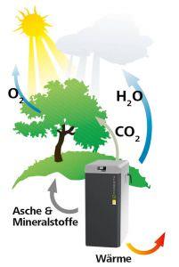 CO2 Kreislauf bei der Verbrennung von Biomasse wie Holz und Pellets über den Kessel