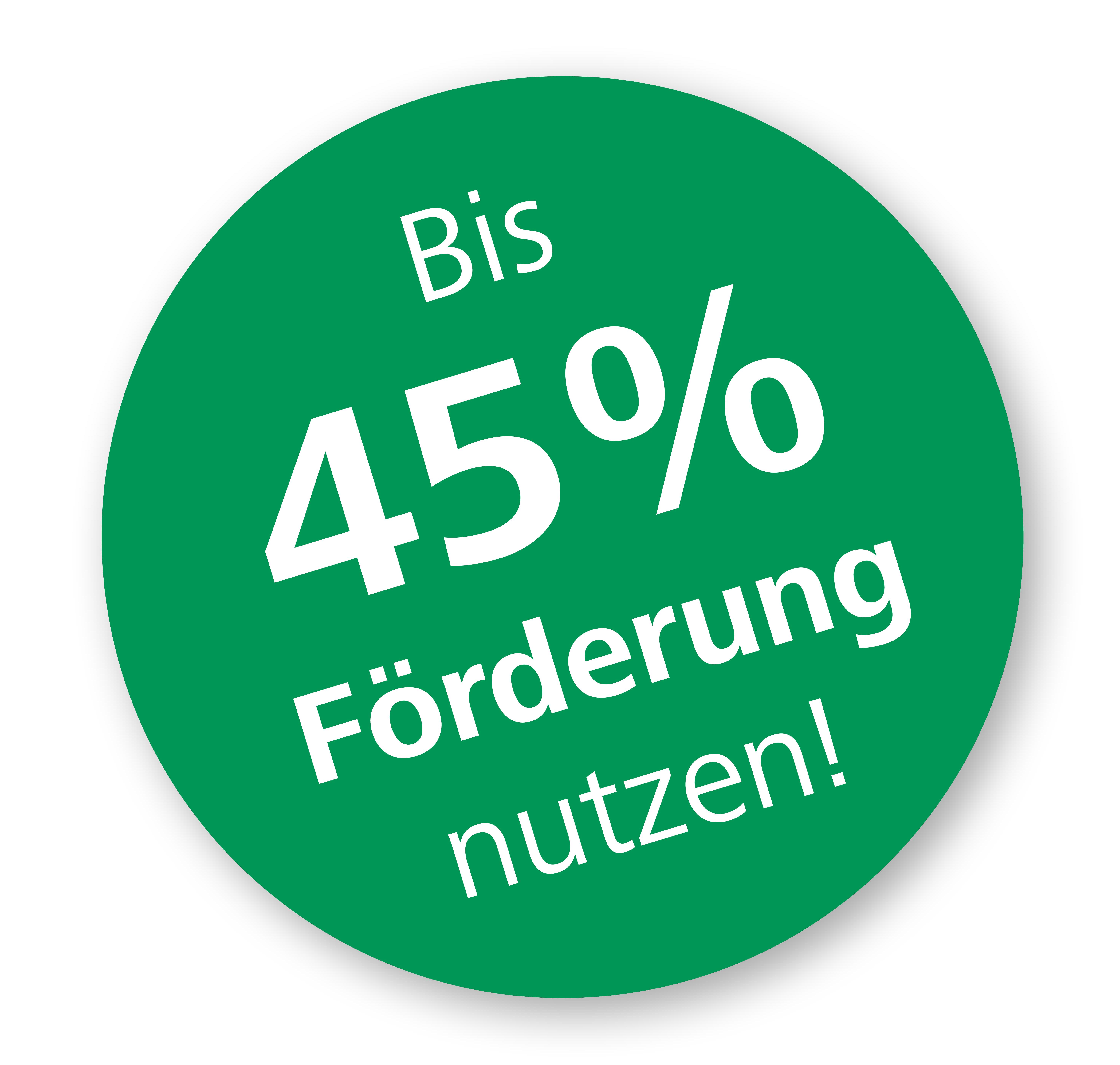 45% Förderung nutzen